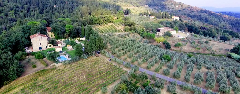 Panorama azienda agricola